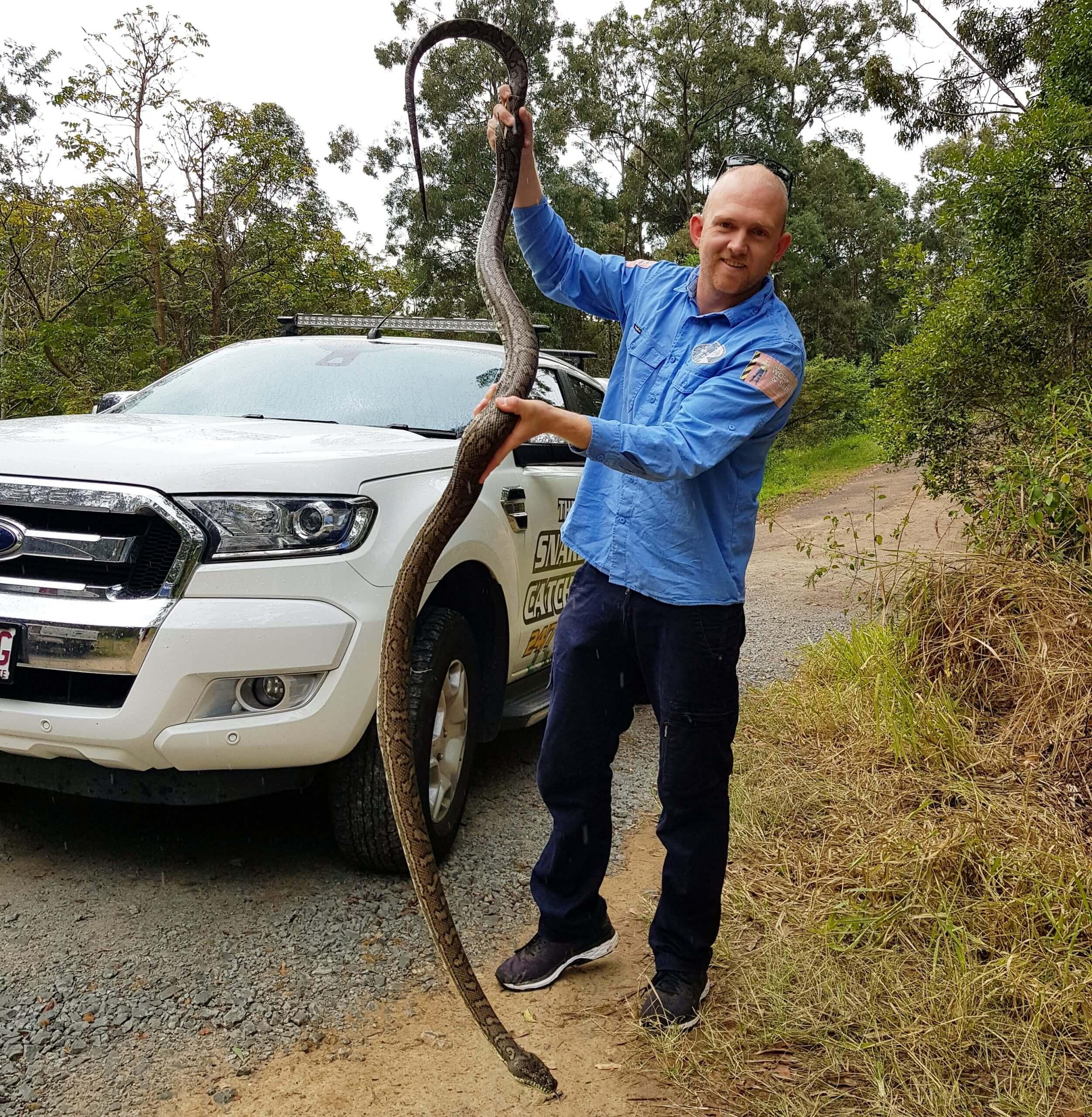 Stuart The Sunshine Coast Snake Catcher With A Python